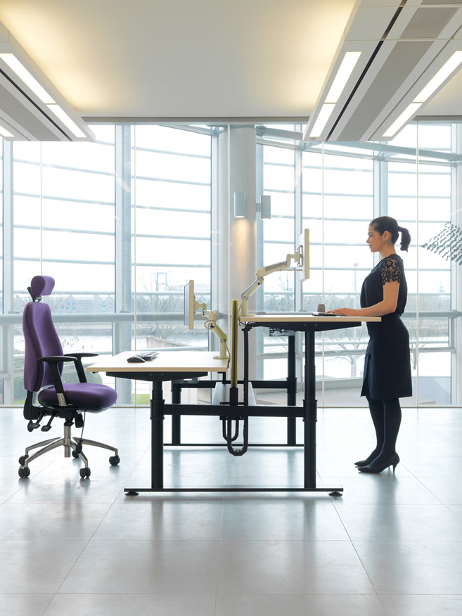 Ergonomic and Wellbeing